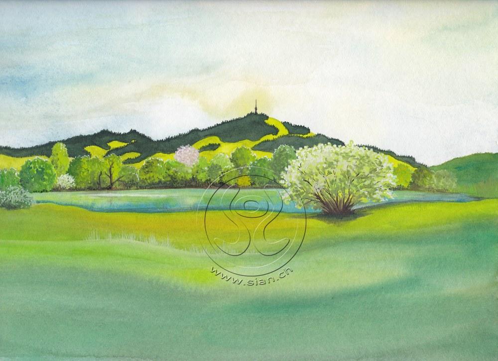 *bachtellandschaft* aquarell auf papier, ca 20/30 cm für die Grünen