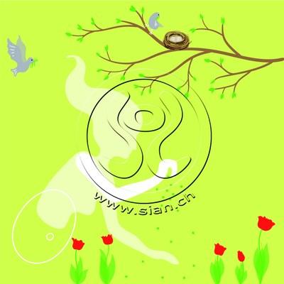*frühlingsbild* bild für frautark.ch / illustrator