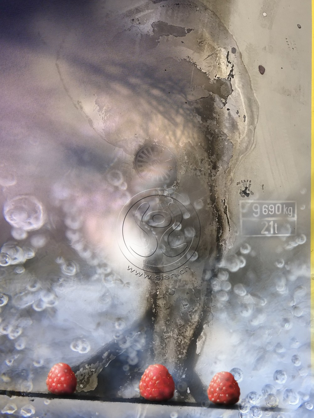 *drei himmbeeren* fotos kombiniert und bearbeitet, 2019