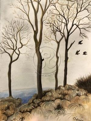 *ostseebäume* aquarell auf papier, ca 15/20 cm